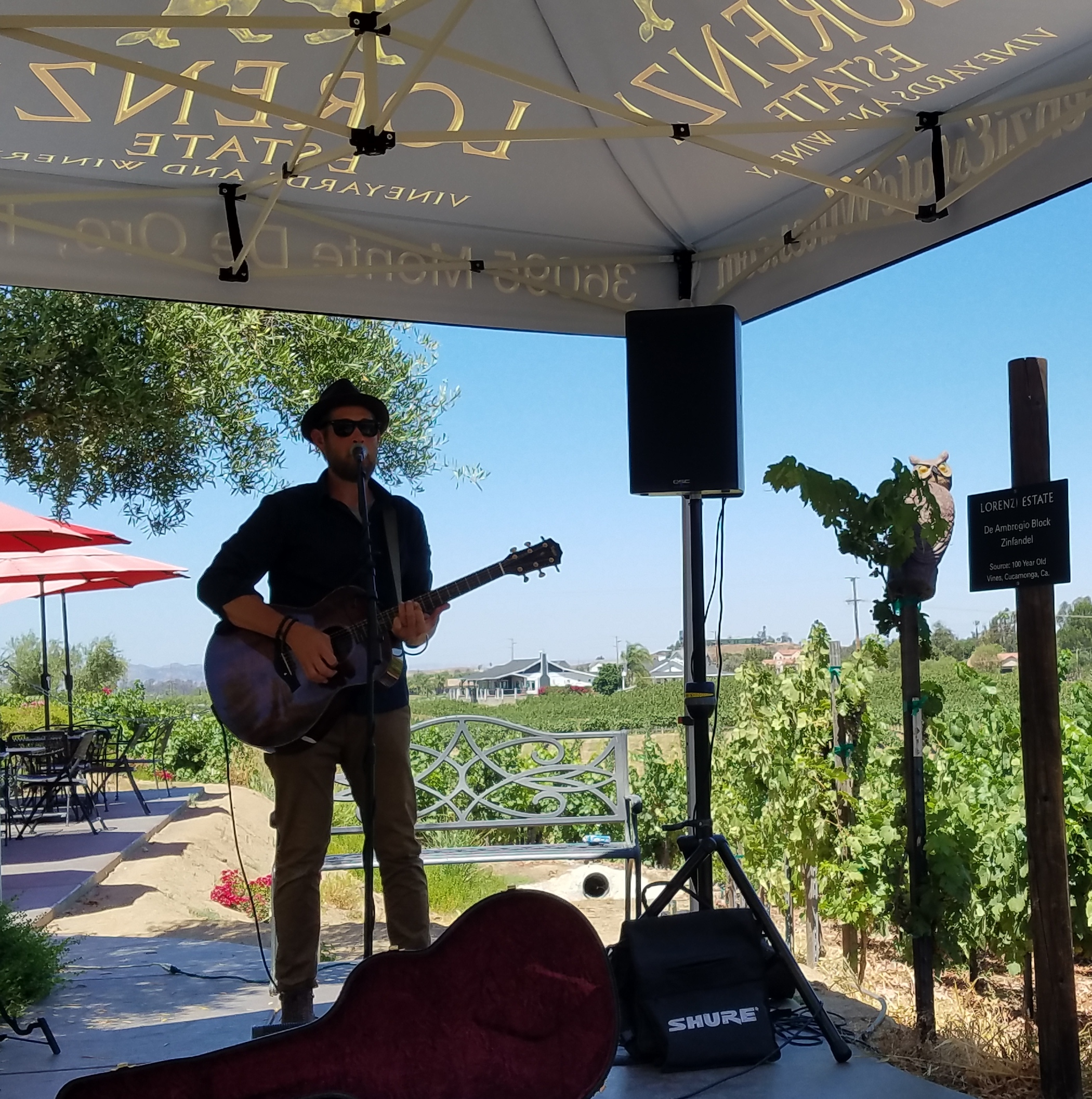 Music In The Vines- Jeffrey Brinkman